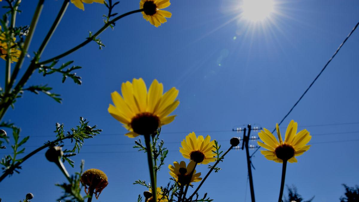 Ηλιοφάνεια- Καιρός