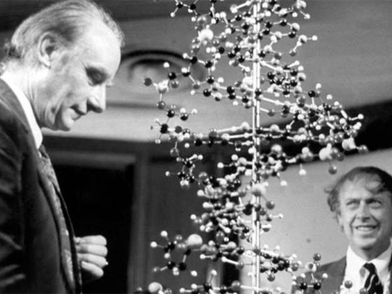 Επιστήμες - Χημεία - Φράνσις Κρικ - Τζέιμς Γουάτσον