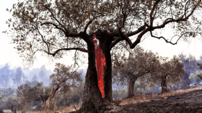 Εντυπωσιακή φωτογραφία από πυρκαγιά