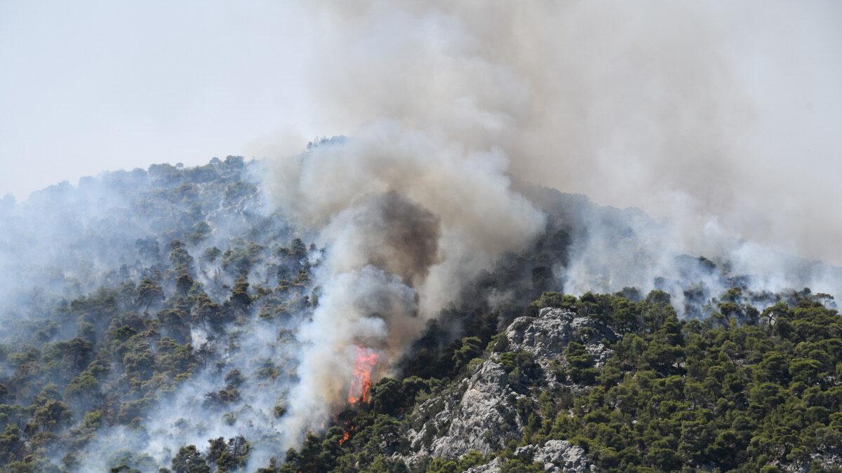 Πυρκαγιά στις Κεχριές Κορινθίας