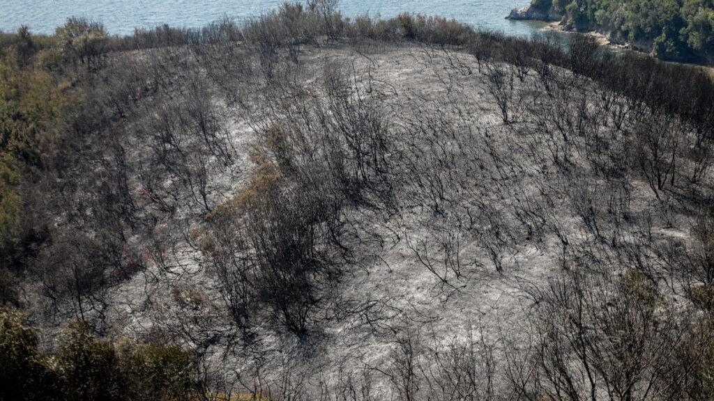 Κέρκυρα, Κασσιόπη του Ερημίτη, εκεί που επενδυτές θα κατασκευάσουν ξενοδοχείο και μαρίνα εν μέσω λαϊκών αντιδράσεων. Ότι απέμεινε από την πυρκαγιά του Σαββάτου 17/8/2020