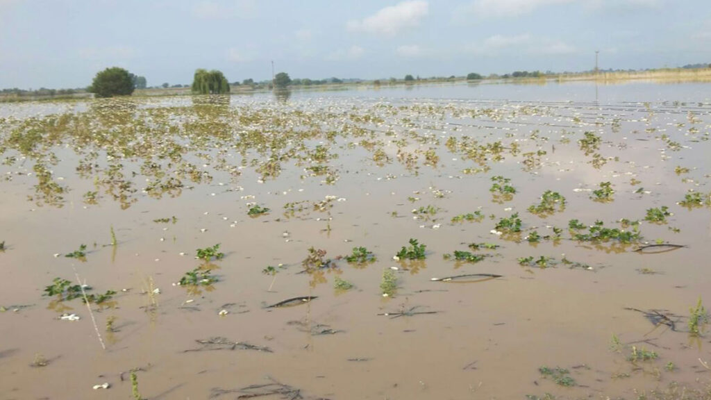 Πλημμύρες στον Παλαμά Καρδίτσας