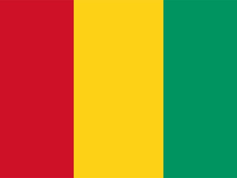 Η σημαία της Γουινέα