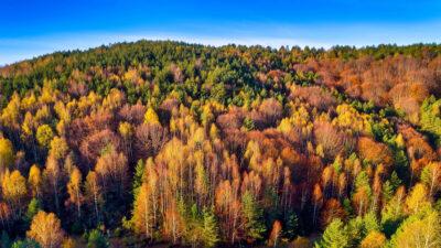 Φθινόπωρο στην ορεινή Ξάνθη