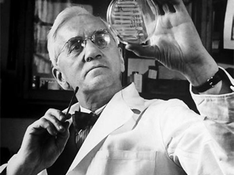 Επιστήμες - Βιολογία - Αλέξανδρος Φλέμινγκ