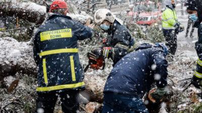 """Πυροσβέστες στην αποκατάσταση οδικών και ηλεκτρικών δικτύων στην κακοκαιρία """"Μηδεια"""" - 17/2/2021"""