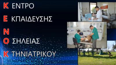 Ένοπλες Δυνάμεις - Στρατός - Κέντρο Εκπαıδεύσεως Νοσηλείας Κτηνıατρıκού, (ΚΕΝΟΚ, Λάρισα)