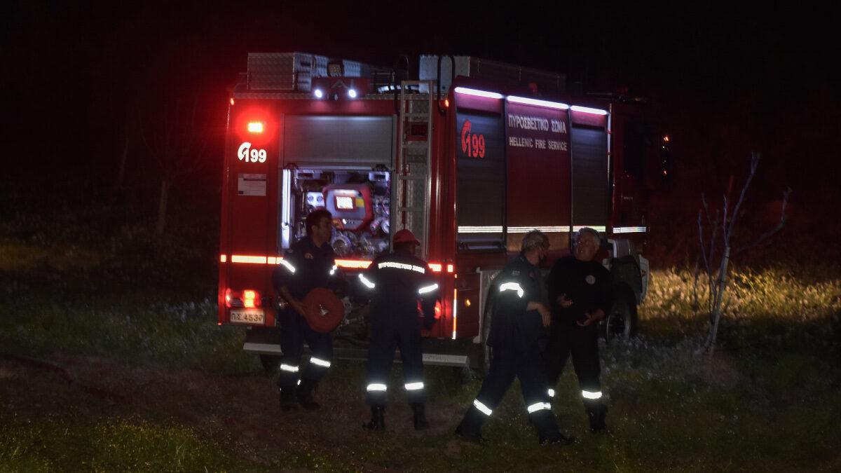 Πυροσβέστες - Πυροσβεστική - Δασική Πυρκαγιά στη Σμέρνα Ηλείας / Μάης 2021