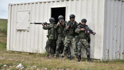 """Πολυεθνική άσκηση """"PLATINUM WOLF-21"""" στη Σερβία"""