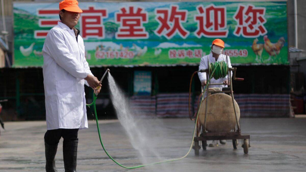 Ψεκασμοί στην Κίνα ενάντια στη νόσο των πτηνών