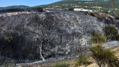 Πυρκαγιά στην Αχαΐα - Πυροσβεστική