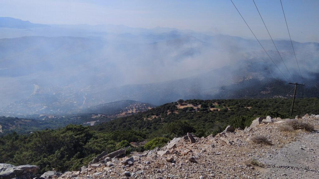 Πυρκαγιά στα Νέα Στύρα Εύβοιας - 10/7/2021