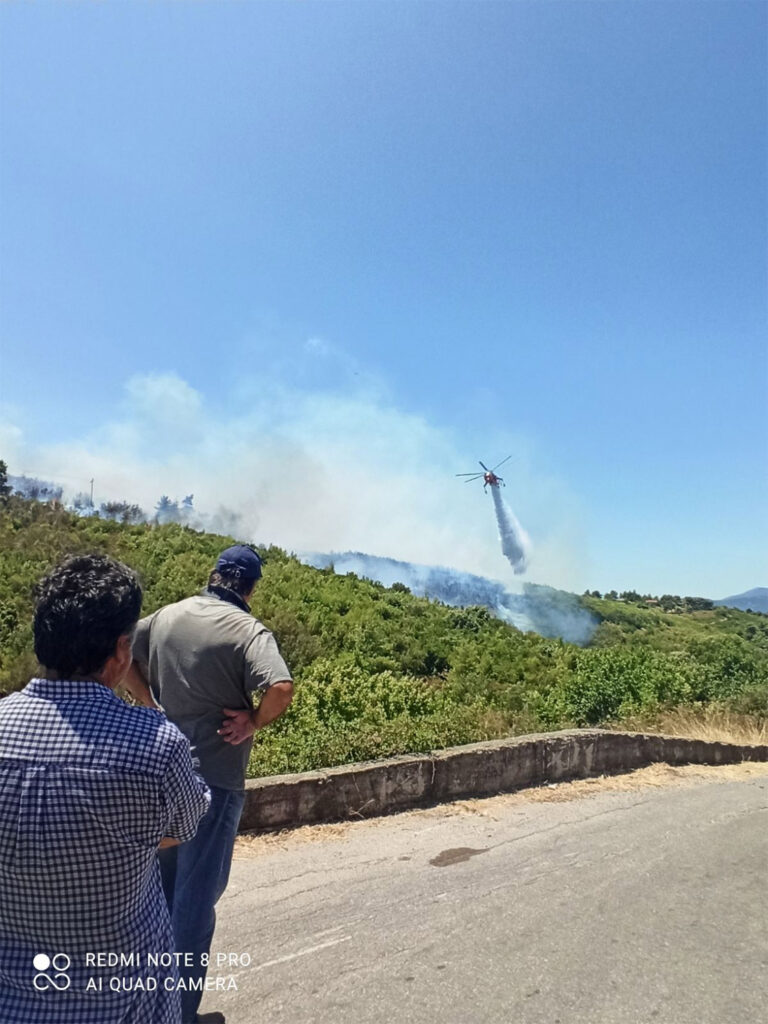 Φωτιά στο Βαρνάβα Αττικής