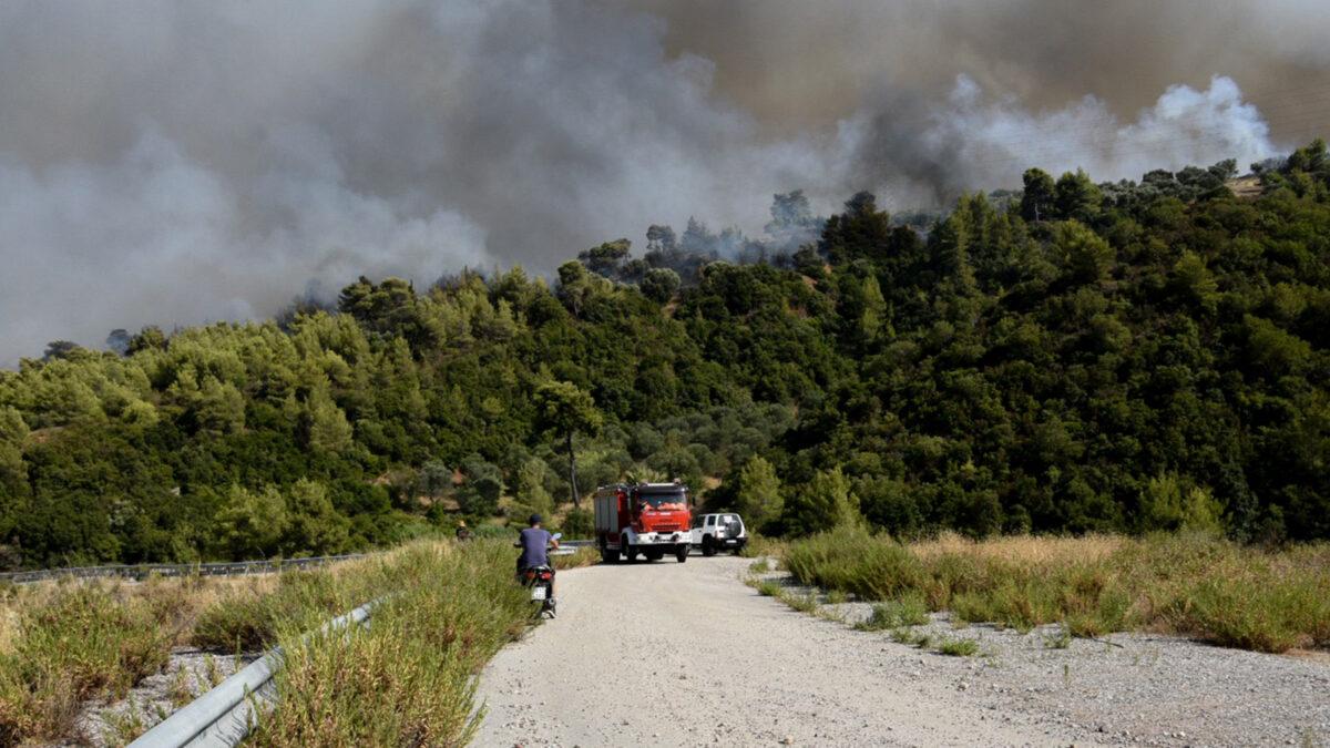 Πυροσβεστική - δάσος - Πυρκαγιά στην περιοχή Λαμπίρη Αχαΐας