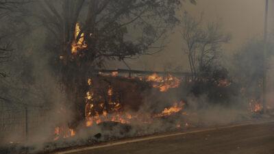 Πυροσβεστική - Δάσος - Πυρκαγιά στην Αιγιάλια Αχαΐας, Σάββατο 31 Ιουλίου 2021