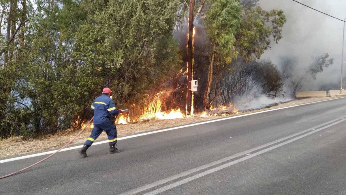 Πυροσβεστική - δάσος - Πυρκαγιά στην Αιγιάλια Αχαΐας, Σάββατο 31 Ιουλίου 2021 / Οι δυνάμεις του ΚΚΕ στη μάχη / Πηγή: ΚΚΕ