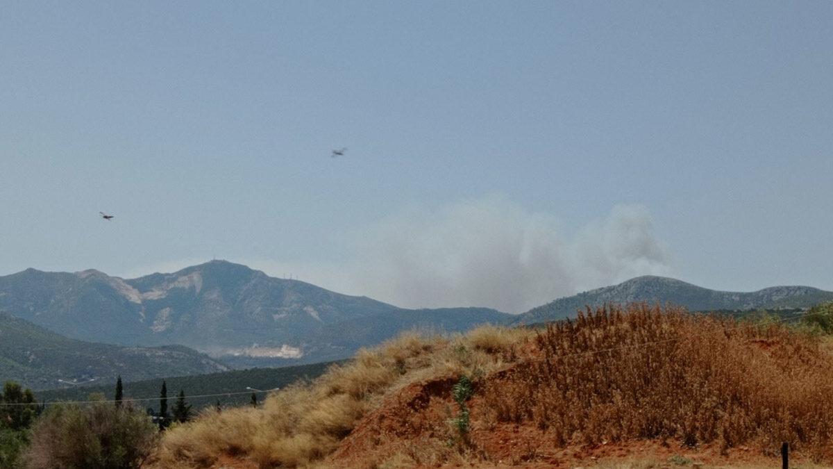 Πυρκαγιά στη Σταμάτα Αττικής
