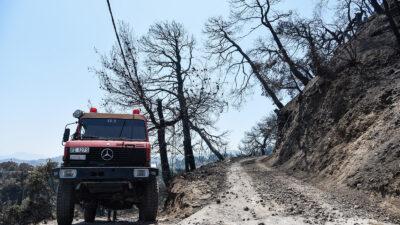 Πυροσβεστική - Πυρκαγιά - Δάσος - Καταστροφές από την πυρκαγιά στην Ζήρια Αχαΐας, Κυριακή 1 Αυγούστου 2021.
