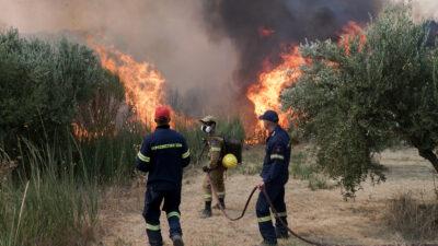 Πυρκαγιά στην Ηλεία - Πυροσβεστική