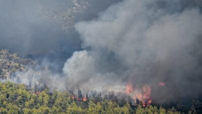 Πυρκαγιά στα Βίλλια Αττικής