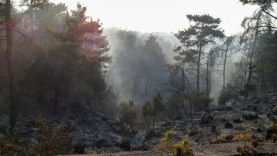 Στιγμιότυπο από την πυρκαγιά στην Ρόδο, Δευτέρα 2 Αυγούστου 2021.