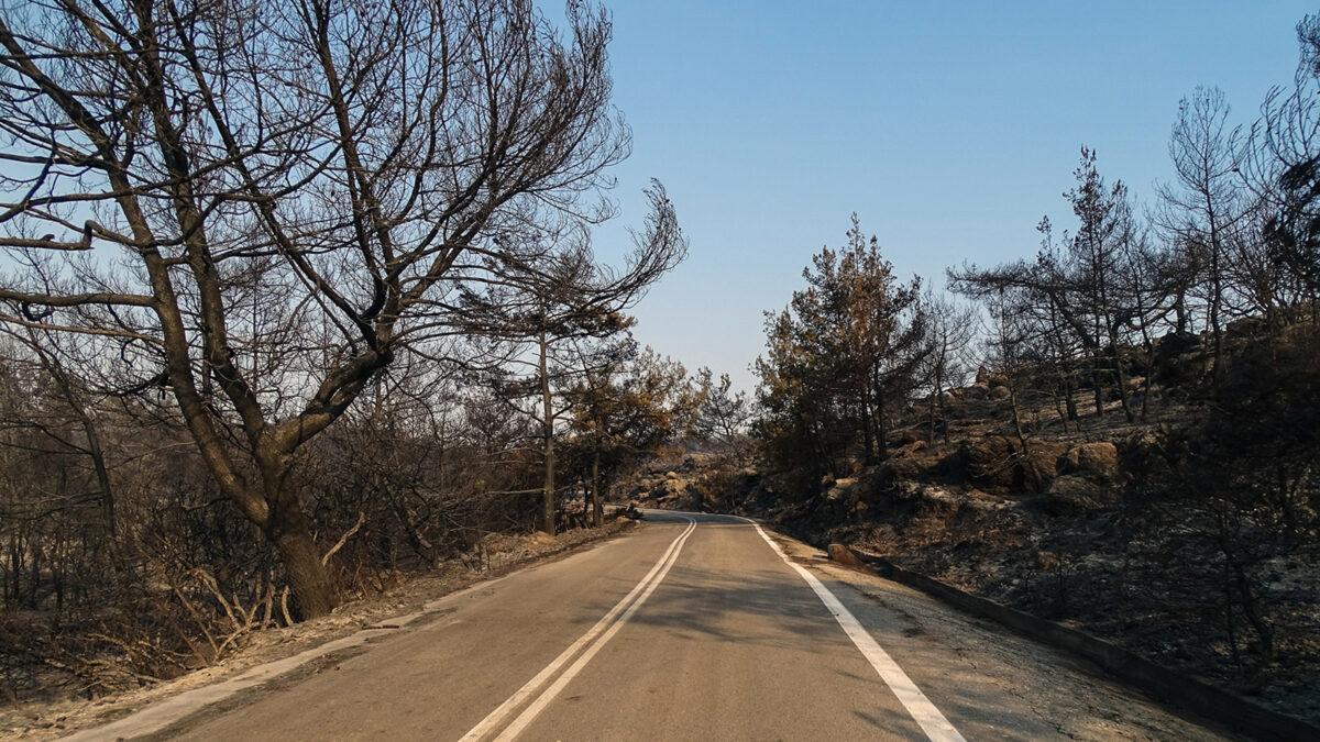 Καμένα δάση - πυροσβεστική - Πυρκαγιά στην Ρόδο, Δευτέρα 2 Αυγούστου 2021.