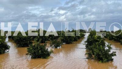 Καταστροφικές πλημμύρες στο νομό Ηλείας